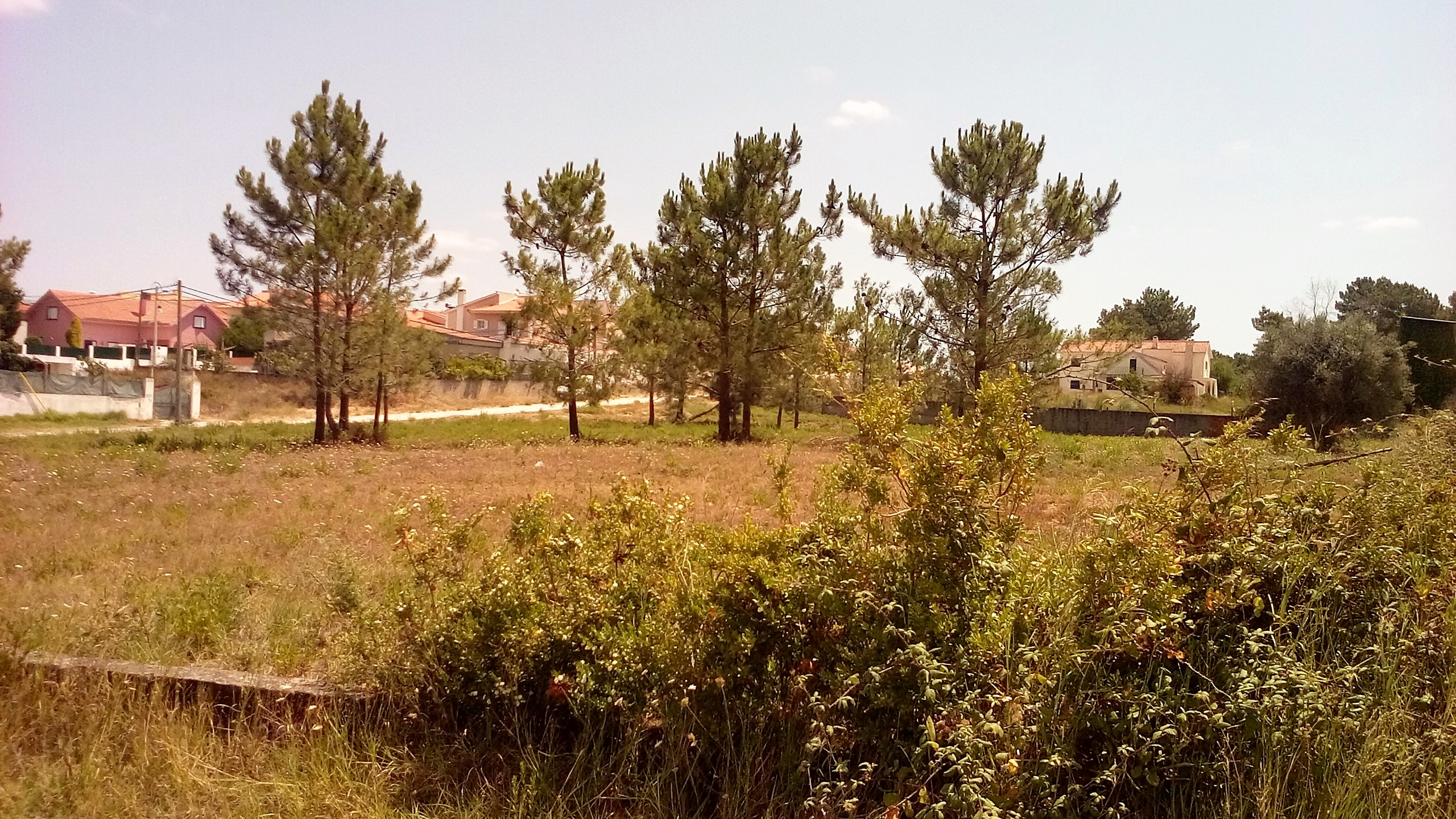 Terrenos T0 - Seixal, Fernão Ferro